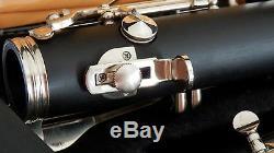 A clarinet Soprano clarinet Clarinette en La Clarinet Clarinetto in A