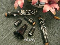 Brand New Andino Wood Clarinet, Buffet Copy! Perfect For School Bands MSRP $1248
