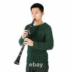 Professional 17 Key B Tone Clarinet with Case + Care Kit for Beginner Black UK