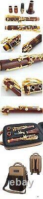 SELMER PARIS 10G PROFESSIONAL Bb Cocobolo WOOD CLARINET SILVER PLATED Keys New